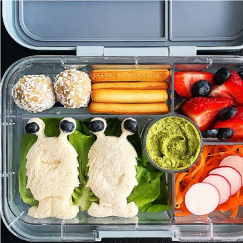 Creative Lunchbox Ideas (16)