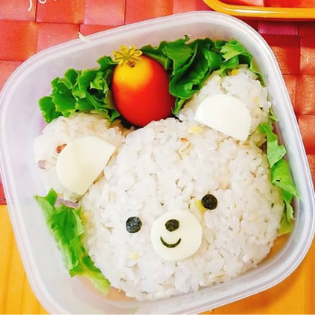 Creative Lunchbox Ideas (5)