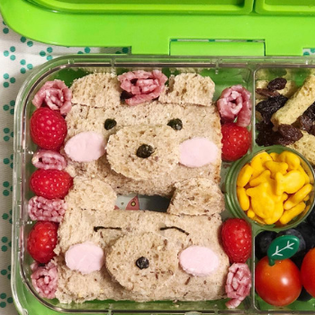 Creative Lunchbox Ideas (6)