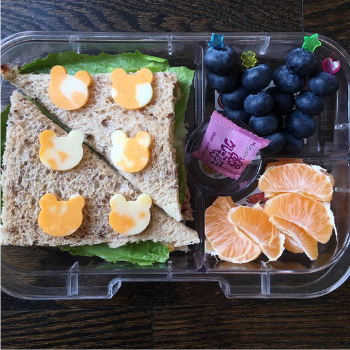 Creative Lunchbox Ideas (8)